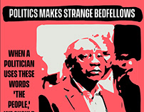 Politics makes for odd bedfellows in S. Africa