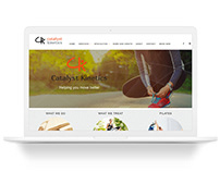 Catalyst Kinetics Website