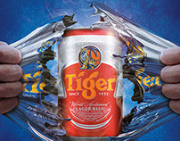 Tiger Beer Singapore | National Day Campaign 2014