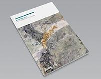 Amara Mining 2013 Annual Report