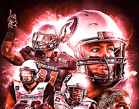 CFL: Ottawa REDBLACKS (2014) Collage