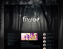 Fiwer Website