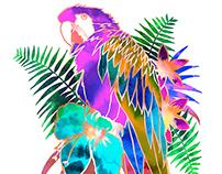 Tropical Bird Series