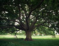 Landrover - The Tree