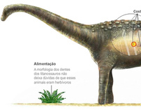 Tapuiassauro, the newly discovered dinosaur of Brazil
