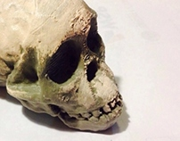 Taung Child 3D Print