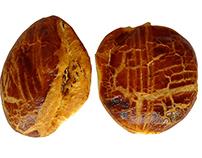 Sade Poğaça ve Peynirli Poğaça Fotoğrafları