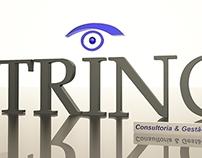 Logo 3D Trino - Consultoria e Gestão de Obras