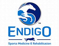Custom Horse Logo for Endigo