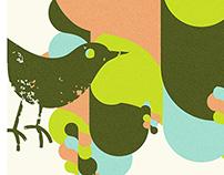 Bird'O