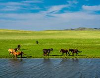 about Kazakhstan