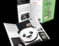 Panda Brochure