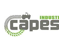 Capesa Logo
