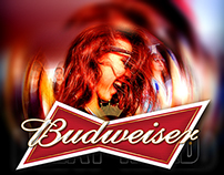 Budweiser - World Cup 2014