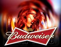 Budweiser - World Cup 2014