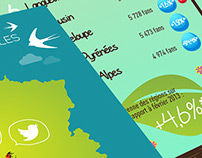 Local Authorities & Social Networks spring infographics