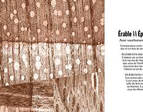 Publication - Anatomie du bois de résonance