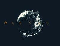 Plexus Experiment