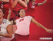 2014 NC State Volleyball Poster