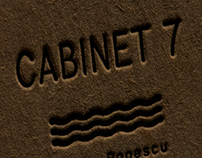 Cabinet 7