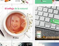 Lottus Té - Social Media