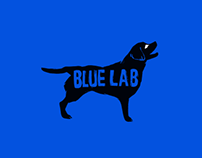 Blue Lab Productions Branding