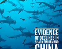 Evidence of Declines in Shark Fin Demand China