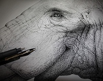 """Elephantidae"", 2012."