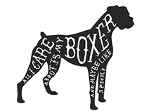 All I Care About Is My Boxer...