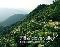 Clove Valley Resort under construction 2014 (一方VISTA)