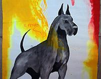 REFLEXION DEL PERRO / DOG'S REFLECTION