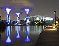 Gardens By The Bay | Landscape