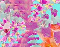 Perspectiva-botanica