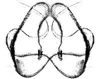 Gyotaku Method Animal Prints