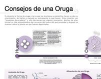 Infografías Cíclicas