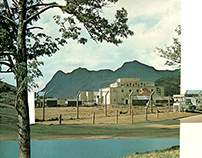 The Country Life Picture Book of