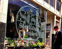 Stek Rotterdam