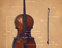 Construction of the Cello