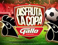 La Copa Gallo 2014