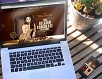 Magnum Pakistan Responsive Parallex Website