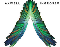Axwell ^ Ingrosso - Governors Ball 2014