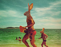 Rabbits on the Beach