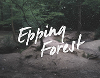 Epping Forest - Cinemagraphs