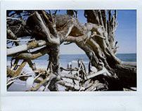 Instant Film Photography: Coastal Scenes