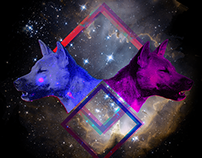Strange dog - Poster