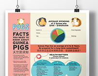 POGS Infographic poster & Direct Mailer