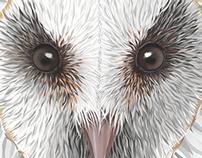 Lechuza/Owl