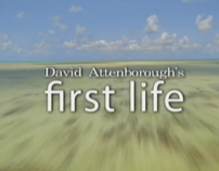 First Life | David Attenborough | Documentary