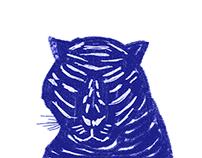 Blue Tiger 蓝色老虎