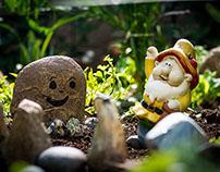 Aufnahmen im Garten